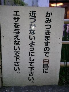 DSC_0313.jpg